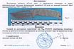Нож охотничий нескладной для походно полевых работ и ежедневнго использования (EDC серия), фото 5