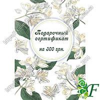 Сертификат подарочный на 300 грн.