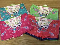 Трусы детские шортики с Мишками до 10 лет (26032)