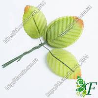 Лист розы с коричневым краем на проволоке