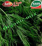Семена, Укроп кустовой, жаростойкий ДАРК / DARK (темно-зеленый), мешок 5 кг, SAIS (Италия), фото 2