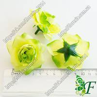 Головка розы Конфетти салатовая