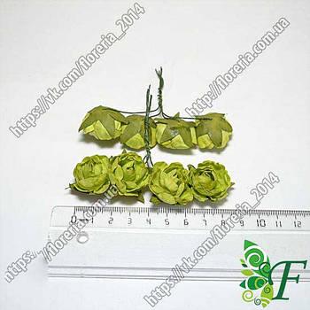 Пион бумага 4шт зеленый