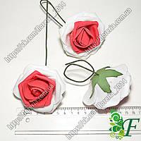 Роза латексная D80мм бело-красная