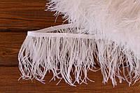 Перья страуса на ленте (белые)