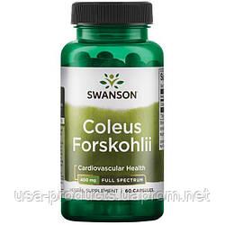 Колеус Форсколий 400 мг 60 капс