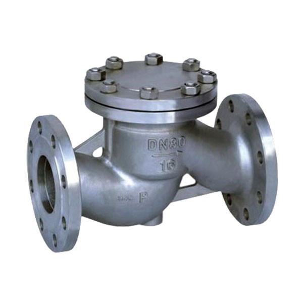 Клапан обратный фланцевый стальной 16с10нж Ру25 Ду 25