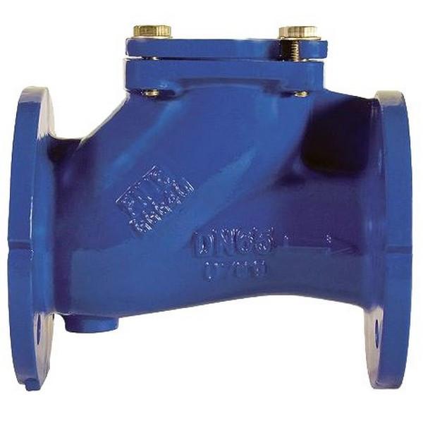 Клапан обратный фланцевый чугунный канализационный шаровый арт С102 Ру16 К Ду 100