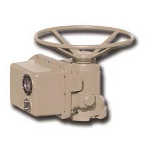 Электропривод многооборотный (У1) Тип ГЗ-Б.300/36