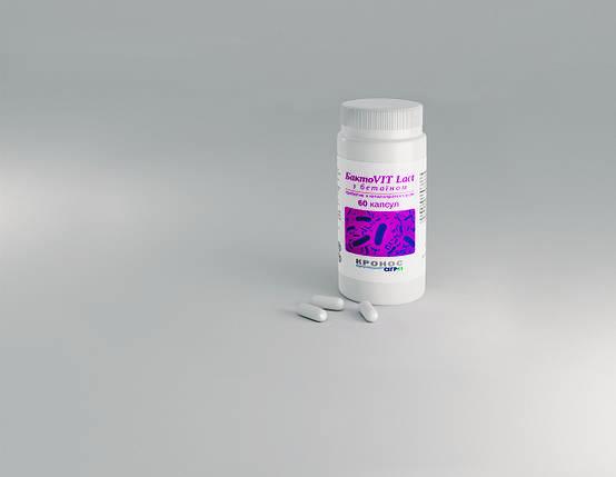 БактоVIT Lact с бетаином №60, пробиотик и гепатопротектор, фото 2
