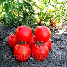 Асвон F1 10 шт насіння томату низькорослого Kitano