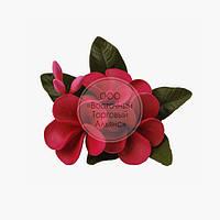 Букет из мастики - Плюмерия красная