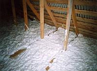 Утепление домов Стены,Чердаки,Полы Пеноизол экоизол