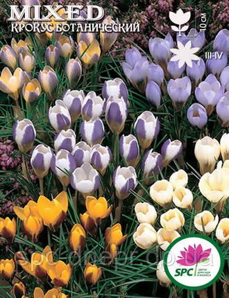 Крокус ботанический Mix(смесь)