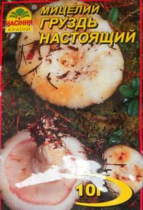 Мицелий гриба Груздь настоящий 10г.