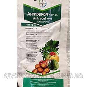Фунгицид Антракол® с.п. Байер 10 кг