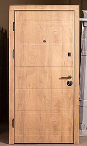 Входная дверь по доступной цене сталь 1,2 мм.