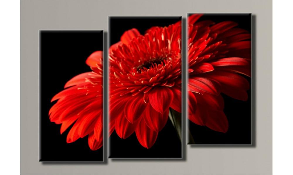 Модульная картина Красная гербера 57х80 см (HAT-064)