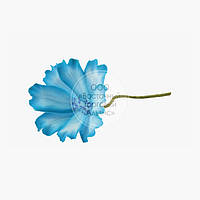 Цветы из мастики - Космея голубая