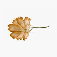 Квіти з мастики - Космея помаранчева