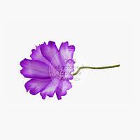 Квіти з мастики - Космея бузкова