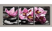 Модульная картина Орхидеи на камнях-4 55х140 см (HAT-138)