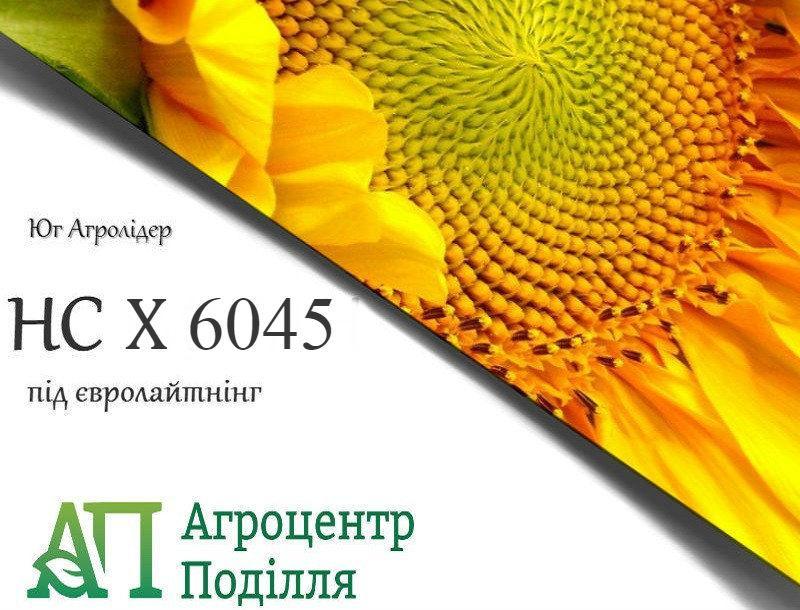 Семена подсолнечника под евролайтинг НС Х 6045 (стойкий к заразихе A-G+)  (бесплатная доставка от 10 п.о.)