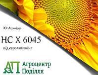 Насіння соняшнику під евролайтинг НС-Х-6045 (стійкий до вовчка A-G+)