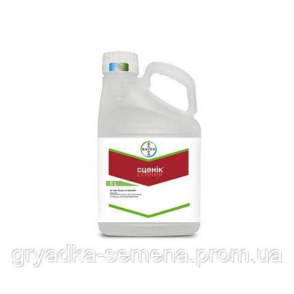 Протравитель Сценик® Байер (Bayer) - 5 л, ТК