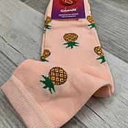 Носки женские демисезонные хлопок Смалий 522Д, 23-25 размер, 14042, фото 2