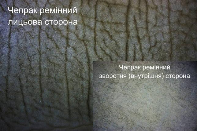 Кожа ременная чепрачная (Чепрак) т.4,0 мм., цвет оливковый, фото 2