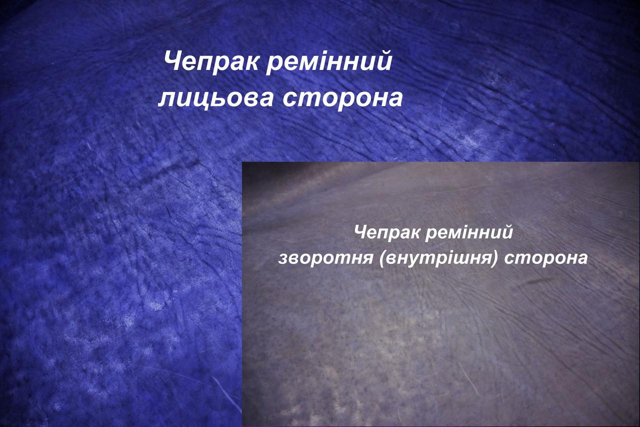 Кожа ременная чепрачная (Чепрак) т.4,0 мм., цвет синий