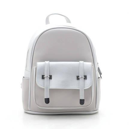 Рюкзак DS-613 silver grey, фото 2