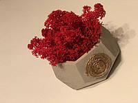 Кашпо з гіпсу для декору, для створення композицій, фото 1