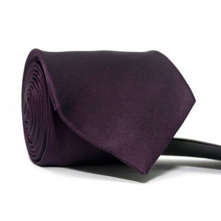 Краватка Чоловічий Баклажан Gin-2442, фото 2