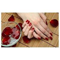 """Набор """"Премиум"""" для покрытия ногтей гель лаком Kodi"""