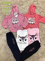 Трикотажный костюм-тройка для девочек оптом, S&D, 1-5 лет, арт. CH-5808
