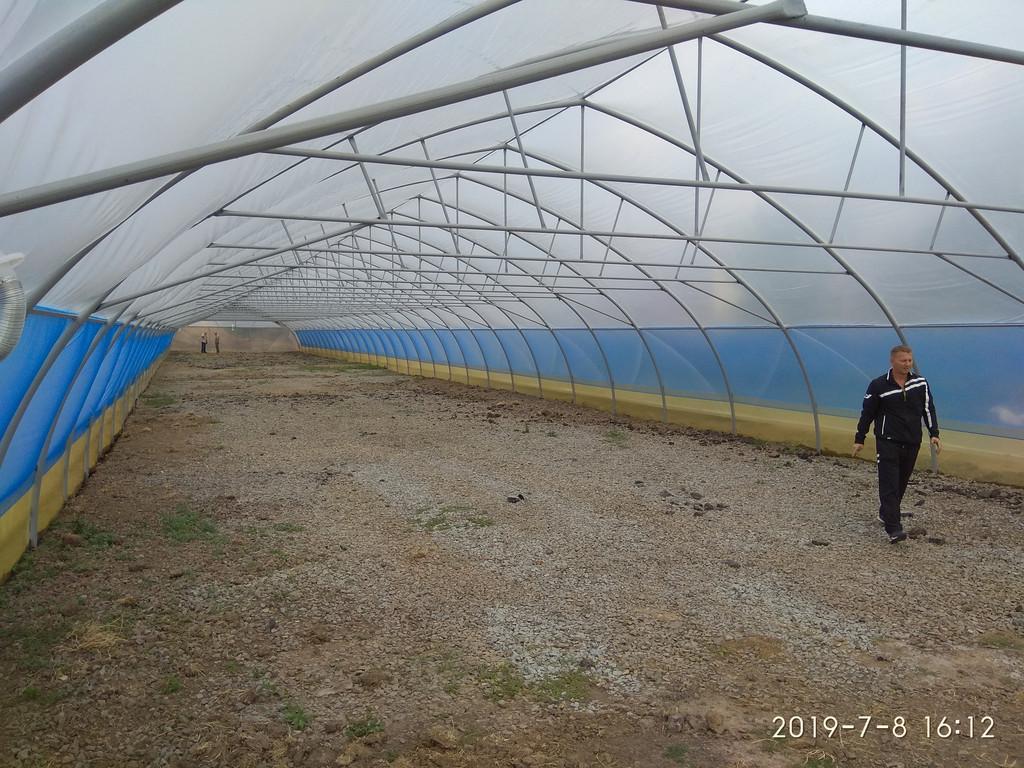 открытое боковое проветривание фермерской теплицы с наддувом для зимнего выращивания