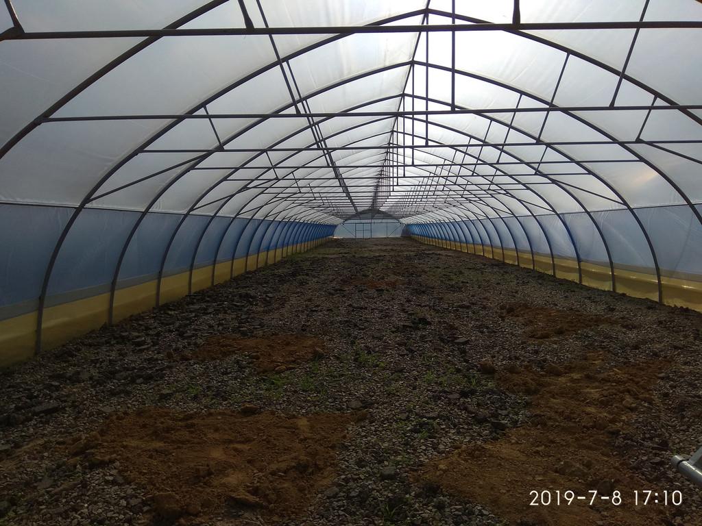 фермерская теплица шириной 10 метров изнутри в киевской области