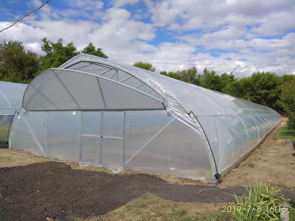 фермерская теплица 10х70 метров с открытым торцевым проветриванием