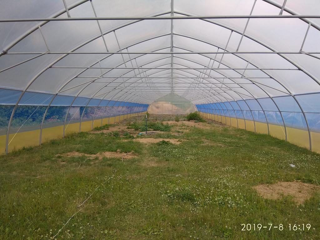 фасад фермерской теплицы из пленки с наддувом изнутри - открыты ворота и торцевое проверивание