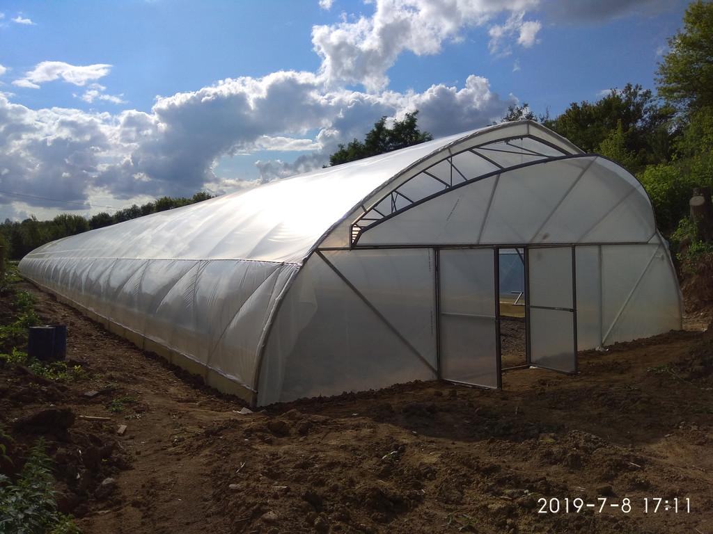 фасад фермерской теплицы из пленки с открытым торцевым проветриванием
