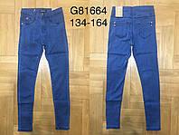 Джинсовые брюки для девочек оптом, Grace ,134-164рр., фото 1