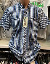 Мужские качественные летние хлопковые турецкие рубашки