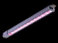 LED светильники для выращивания растений IP54, Световые технологии PLANTADOR LED 30 D120 HFR IP54 BRFR [1340000030]