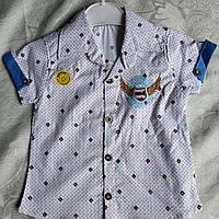 Рубашка  тенниска от 7 до 11 лет