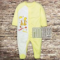 Человечек для новорожденного р. 68 демисезонный ткань ИНТЕРЛОК 100% хлопок ТМ Авекс 3039 Желтый А