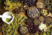 7 трав для лучшего контроля гликемии при диабете