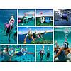 Маска для плавания, ныряния, дайвинга, снорклинга FREE BREATH L/XL с креплением на камеру + ПОДАРОК, фото 4