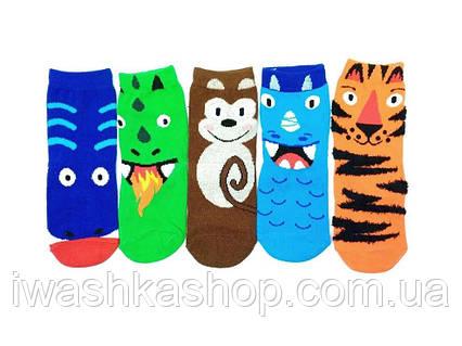 Комплект ярких разноцветных носков с животными на мальчиков 2 - 3 лет, р. 23 - 26, Primark